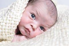 Portret van pasgeboren baby royalty-vrije stock afbeeldingen