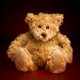 Portret van Pluizig Teddy Bear royalty-vrije stock fotografie