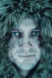 Portret van polair Stock Afbeelding