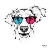 Portret van pug in de gekleurde glazen Vector illustratie Stock Foto's