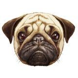 Portret van Pug hond vector illustratie