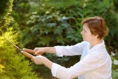 Portret van rijpe vrouwelijke tuinman Vrouw die met secateur in binnenlandse tuin bij de zomerdag werken royalty-vrije stock foto