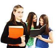 Portret van slim studentenmeisje met de klasgenoten stock afbeeldingen
