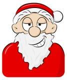 Portret van speels grijnzende Santa Claus royalty-vrije illustratie