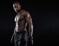 Portret van spier mannelijke bokser stock fotografie