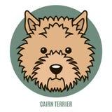 Portret van Steenhoop Terrier Vector illustratie Stock Afbeeldingen