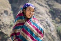 Portret van tibetan vrouw in de Bergen van Himalayagebergte stock foto's