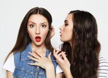 Portret van twee gelukkige jonge vrouwen die geheimen delen royalty-vrije stock afbeeldingen