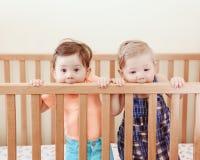 Portret van twee leuke aanbiddelijke grappige babyssiblings vrienden van negen maanden die zich in bedvoederbak bevinden royalty-vrije stock foto