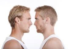 Portret van tweelingbroers Stock Afbeeldingen