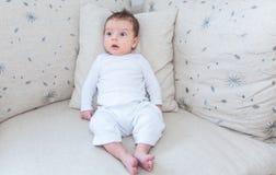 Portret van 2 van de babymaanden oud jongen Stock Foto's