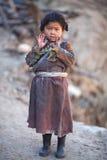Portret van weinig tibetan meisje royalty-vrije stock foto's
