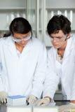 Portret van wetenschapsstudenten die een experiment maken Royalty-vrije Stock Fotografie