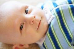 Portret 7 week oude baby Stock Afbeelding