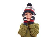 portret zimy. zdjęcie stock