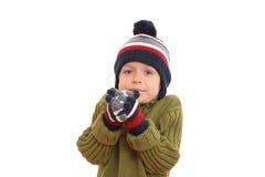 portret zimy. obraz stock
