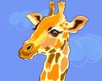 Portret zwierzęca żyrafa, głowa na niebieskim niebie Piękny zwierzę w Afryka obrazy royalty free
