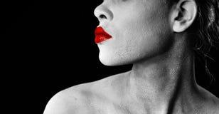 portreta czarny biel Obrazy Royalty Free