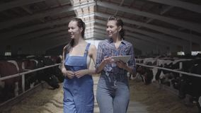 Portreta dwa dziewczyn rolnicy robi wycieczce turysycznej stajnia z krowami na gospodarstwie rolnym Dziewczyna rolnik pokazuje go zdjęcie wideo