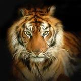 portreta tygrys royalty ilustracja