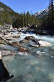 Portretfoto van water het lopen Royalty-vrije Stock Fotografie