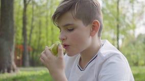 Portretjongelui weinig jongenszitting met hoofdkussen in het groene park en in openlucht het eten van een appel Openlucht recreat stock video
