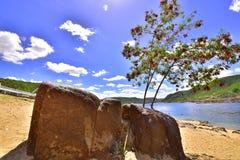 Portrety słowo Alagoas Brazylia zdjęcia royalty free