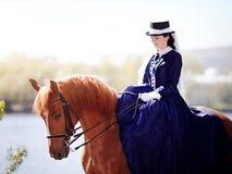 Porträt der Dame auf einem roten Pferd Stockbild