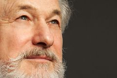 Porträt des alten Mannes mit Bart Lizenzfreie Stockfotos