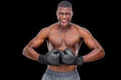 Porträt des hemdlosen muskulösen Boxers, der Muskeln biegt Lizenzfreies Stockbild