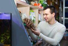 Porträt des Kerls Tierarztlebensmittel im petshop vorwählend Stockfotografie