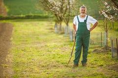 Porträt eines hübschen älteren Mannes, der in seinem Garten im Garten arbeitet Stockfotos