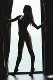 Porträt im Schattenbild der verlockenden schönen jungen Frau Stockfotografie
