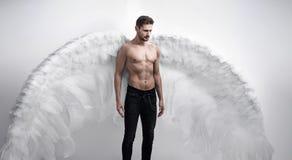 Portrtait de um anjo consider?vel, s?rio - isolado imagem de stock