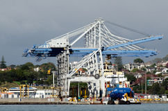 Ports d'Auckland Images stock