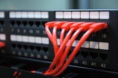 Ports et fils de réseau. Photos libres de droits