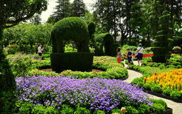 Portsmouth, RI: Green Animals Topiary Gardens Royalty Free Stock Photography