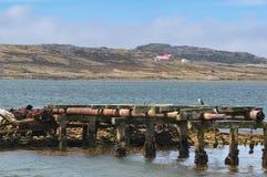 PortStanley hamn Falkland Islands Arkivfoton