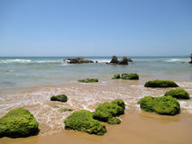 Portugal, Algarve, Portimao. Green stones on the sand near sea on the blue sky background horizontal view. Royalty Free Stock Photo