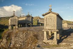 The group of espigueiros in Soajo settlement of Peneda-Geres national park, Portugal. Portugal - Braga - The group of espigueiros raccards or granaries lifted to royalty free stock image