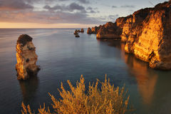 Portugal: Dona Ana beach in Lagos. Dona Ana beach in Lagos, Algarve during sunrise early in the morning Royalty Free Stock Images