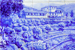 Portugal, Douro valley, Pinhao:ceramics, Azulejo. Portugal, Douro valley, Pinhao: ceramics at the ancient railway station, Azulejo; olive trees and grappe ; a stock photos