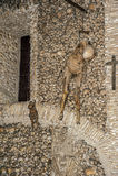 Portugal, Evora Kapelle der Knochen Stockfotos
