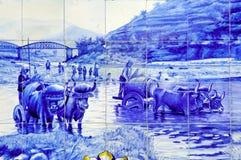 portugal för pinhao för azulejokeramikdouro dal royaltyfria bilder