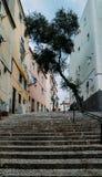 Portugal lizbońskiego Kamienni schodki z poręczami wśród colourful starych domów w Alfama okręgu obraz royalty free