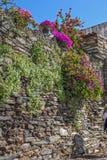 Portugal, Monsaraz Mittelalterliche Wände von Gebäuden und von Zäunen Stockfotografie