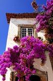 Portugal Obidos; uma cidade medieval foto de stock