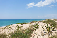 Portugal - Praia tun Ancao Stockfotografie