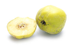 Portugal quince or pear quince (Cydonia oblonga) isolated on whi Stock Image