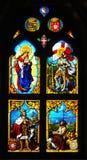 Portugalskiej plamy szklany okno przedstawia Vasco Da Gama Fotografia Stock